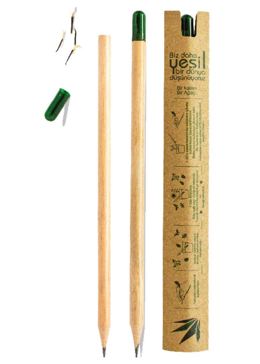 Tohumlu Kurşun Kalem
